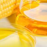 Det nye sukker er lavet på majs.