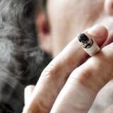 Arkivfoto: Hver fjerde gymnasieelev og hver tredje elev på erhvervsskole er afhængig af nikotin, hvis de ryger dagligt.