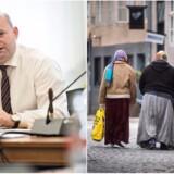 Justitsminister Søren Pape vil gerne håndtere problematikken med tilrejsende romaer og østeuropæere i samarbejde med EU. Til gengæld er der også behov for her og nu tiltag, mener ministeren.