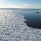 Redere vil forbyde tung skibsolie i Arktis.