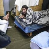Billede fra teltlejr i Thisted. Her er det Azad, 34 til højre.