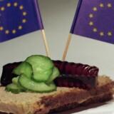 Vejen er ikke at blæse på EU-Domstolen, skriver Birthe Rønn Hornbech. Vejen er at reformere vores eget velfærdssystem, for eksempel ved at indføre forsikringsordninger.
