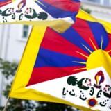 Folk må selv afgøre, om Tibetkommissionen er nået frem til en sandsynlig konklusion, siger advokat.