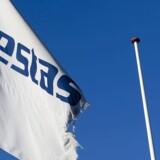De store vindmølleproducenter plejer at annoncere en række ordrer i slutningen af året, men at Vestas efter børslukketid fredag kunne offentliggøre ti ordrer på samlet 998 megawatt (MW) er overraskende markedssituationen taget i betragtning. (Foto: Morten Dueholm/Scanpix 2017)