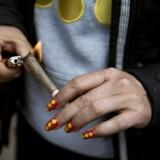 I en jointfabrik på Christiania fandt politiet godt 2000 joints og remedier til at fremstillet yderligere godt 35.000. Scanpix/Liselotte Sabroe/arkiv