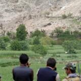 I baggrunden af billedet, hvor træerne er afpillede og afbrændte, ses ifølge Reuters stedet, hvor »Mother of All Bombs« sprang.