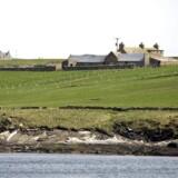 Lokale politikere på Orkneyøerne har kastet sig ind i den britiske Brexit-debat med en beslutning om at undersøge perspektiverne i autonomi fra både Skotland og resten af Storbritannien. Arkivfoto: Hennin Bagger