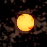 Solen skinner rødglødende på himlen hen over Fælledparken i København i dag, tirsdag den 17. oktober 2017. Ifølge DMI skyldes den meget røde sol partikler fra de mange skovbrande i Sydeuropa. (Foto: Mads Claus Rasmussen/Scanpix 2017)