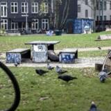 Udenlandske hjemløse må ikke bo på offentligt drevne herberger, så de må ty til nødherberger med meget begrænsede ressourcer. Her er det Folkets Park på Nørrebro, som er et tilholdssted for de hjemløse. Politiet har i den seneste tid rydder 45 »utryghedsskabende lejre«.