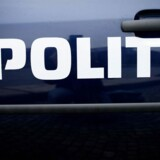 Politikerne overvejer ifølge TV2 at oprette en særlig politikadet-uddannelse. Blandt andet med henblik på bevogtningsopgaver. Arkivfoto. Free/Pressefoto Rigspolitiet