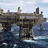 Efter Mærsk Olis salg til Total og DONG Oil & Gas' til Ineos er Nordsøfonden den eneste danske aktør af betydning i Nordsøen. Billedet er fra Tyra Vest i Nordsøen. Aktivfoto: