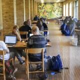 Arkivfoto, studerende (Foto: Kim Haugaard/Scanpix 2015)