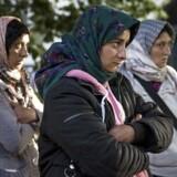 Venstres udlændingeordfører, Marcus Knuth, har forlangt indgriben overfor de tilrejsende romaer i København.