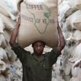 Kaffebønderne her i kaffekooperativet Othaya Farmers Co-operative Society Limited i Kenya har lidt under, at de har skullet dele fortjenesten med et stort antal mellemhandlere, der har skummet helt op til 80 pct. af fløden. Danske Peter Larsen Kaffe har gennemført et projekt, hvor de har hjulpet bønderne til at øge produktionen, produktiviteten og fortjenesten gennem uddannelse og udvikling. Kaffekooperativet står nu for hele værdikæden fra høst til sortering og tørring af kaffen. På den måde undgår kaffebønderne at blive snydt af korrupte mellemhandlere, og der kommer mere på de danske kaffehylder. (Foto: Peter Larsen Kaffe)