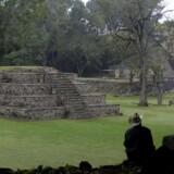 Der findes stadig arkæologiske rester fra de byer, som maya-indianerne boede i, her i Copan arkæologi-parken i Honduras.