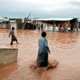 De store vandmasser har fået adskillige huse til at kollapse.