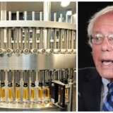 Den amerikanske senator Bernie Sanders vil have myndighederne i USA til at gribe ind over for Novo Nordisk og de andre store medicinalkoncerner.
