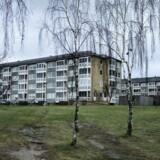 Reportage fra Motalavej i Korsør, som i den senere tid er blevet hærget af unge indvandrerdrenge.