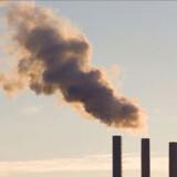 I-landede skal byde ind med deres beskærings-planer i god tid inden klimatopmødet i København 2009. Arkivfoto: Torben Christen / Scanpix