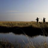 Anders Skjødt og Michael Stolt bor på øen Nyord. De elsker at gå på jagt, og de mener, det styrker fællesskabet i det lille øsamfund.