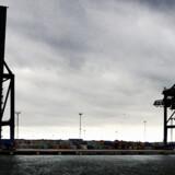 Danske havne, bl.a. Københavns Havn her med Orientkaj, skal have containerscannere efter krav fra USA. Foto: Benita Marcussen