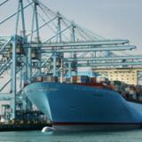 Emma Mærsk sejlede igennem Suezkanalen i går. Nu er giganten på vej til Malaysia og Kina, inden turen igen går til Europa, hvor skibet ankommer til den store spanske containerhavn Algeciras den 30 august. Arkivfoto: Vincent Jannink