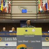 I den seneste tid har også FNs klimapanel været under hård kritik, efter det blev afsløret, at der var fejlagtige oplysninger om afsmeltning af is fra Himalayas gletsjere i panelets seneste klimarapport. Panelets formand, inderen Rajendra Pachauri (billedet), er ligeledes blevet kritiseret for ikke at have rettet fejlene.