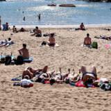Afslapning på en dejlig strand på ferien kan blive en dyr fornøjelse, hvis man har lidt for travlt med at komme frem eller smider øsen et sted, hvor man ikke må parkere.