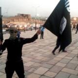 Tyrkiske regeringsudgivelser skal ifølge den svenske terrorforsker Magnus Ranstorp som regel tages med forbehold.
