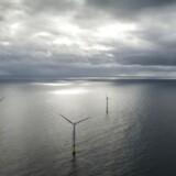 Havvindmølleparken Borkum Riffgrund i den tyske Nordsø