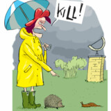 Illustration: Claus Biggum