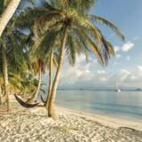 Panama er blandt de lande, der bliver fjernet fra EU's sorte liste over lande med skattely.