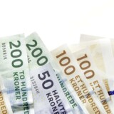 Markedet for udbetaling af danskernes løn er med salget af Bluegarden trukket i retning mod et duopol delt mellem to kapitalejede virksomheder.
