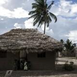 Formodede islamister har under et angreb på en landsby nær byen Palma i det nordlige Mozambique halshugget ti personer. JOHN WESSELS / AFP