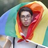 En deltager i Pride Parade i Istanbul holder det velkendte LGBT-flag.