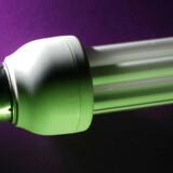 Stridens æble, eller rettere pære: Et kompaktlysstofrør består ligesom andre lysstofrør af en glaskolbe med en blanding af en ædelgas og som regel noget kviksølv. I soklen sidder  en elektronisk tænd-enhed.