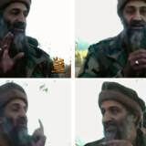 Terrortruslerne mod den vestlige verden kommer i dag fra internetsider og videoklip. Men al-Qaeda er svækket, mener den fremtrædende amerikanske forsker William McCants.