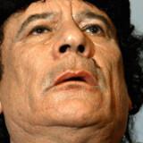 Mens EU er i gang med at forhandle en stor økonomisk aftale med Libyen, afsiger styret med Muammar Gaddafi i spidsen strenge fængselsdomme over systemkritikere.