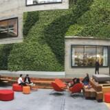 Spiio er en dansk iværksættervirksomhed, der har slået sig ned i Silicon Valley.
