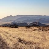 Vejene i det sydlige Namibia er primært grusveje som denne omgivet af smuk natur. Fotos: Jakob Øster