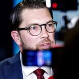 Jimmie Åkesson vil revoulutionere svensk politik. Meningsmålingerne er gået i stå for Sverigedemokraterna, men ingen tør spå, om det vil være gældende for valgresultatet søndag aften.