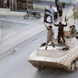 »Jeg vil simpelthen ikke være med til at betale nogle banditter, der kæmper mod danskerne og danske værdier,« siger Leif Lahn Jensen om nye forslag, der skal fjerne offentlig ydelse til Syrien-jihadister.