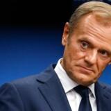Formanden for Det Europæiske Råd, Donald Tusk, er med sin personlige profil et godt eksempel på en rådsformand, der ikke er god for det europæiske projekt, mener Ana Palacio, tidl. spansk udenrigsminister.