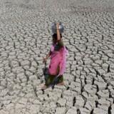 »Gør vi ikke noget helt ekstraordinært, vil Jorden om én til to generationer visse steder være en ubeboelig stegepande.«
