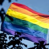Regnbueflaget vil fylde Københavns gader, Copenhagen Pride-paraden går gennem byen sammen med alternative parader, som finder Copenhagen Pride for kommerciel. (Foto: Mads Claus Rasmussen/Scanpix)