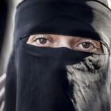 Alle beklædningsgenstande, der dækker ansigtet, bliver forbudt på offentlige steder. Det kan være burka, niqab, elefanthue, huer, hætter, tørklæder, masker, hjelme, heldækkende dragter og kunstige skæg.