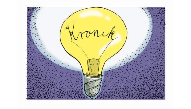 forskellen mellem essay og kronik