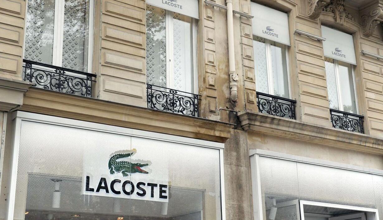 online store 95ac2 260d0 Familiefejde sender krokodille til Schweiz