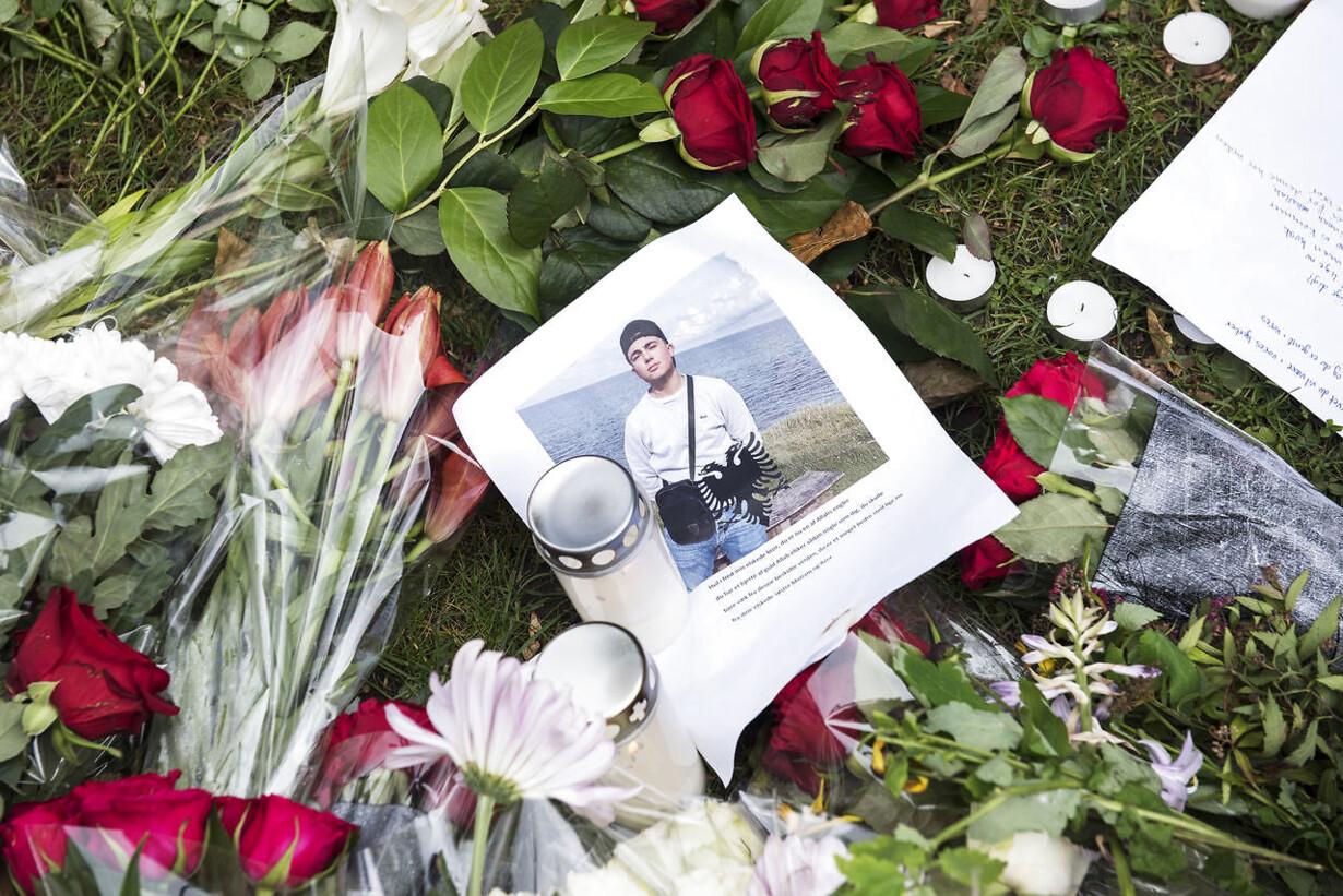 PLUS Mange børn blev dræbt i Danmark i 2017