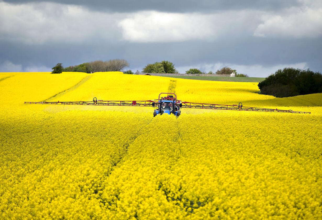 Landmænds gæld skræmmer banker RB PLUS Tidsmaskine afslører
